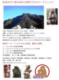poster_SPDPWS_22.jpg